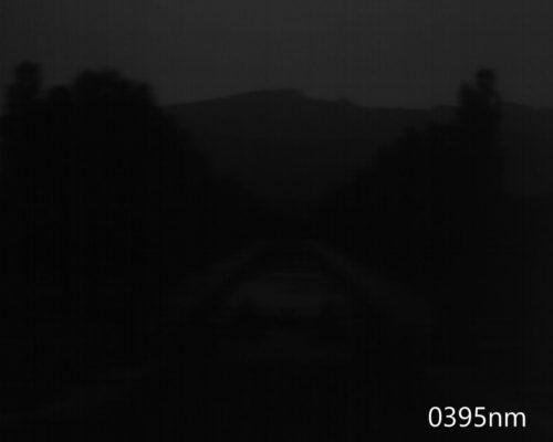ハイパースペクトルイメージ:395nm