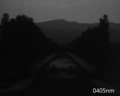 ハイパースペクトルイメージ:405nm