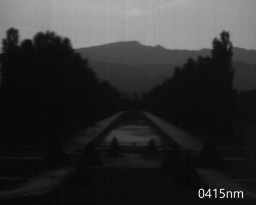 ハイパースペクトルイメージ:415nm