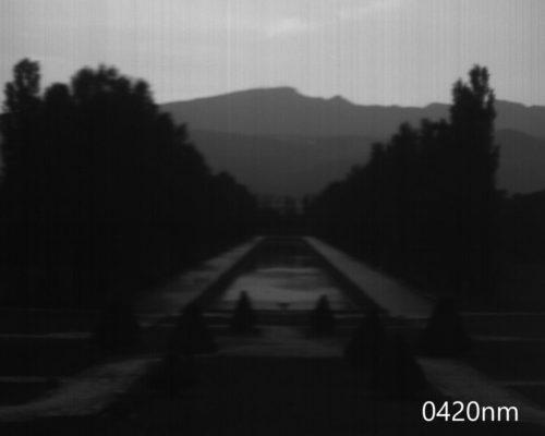 ハイパースペクトルイメージ:420nm