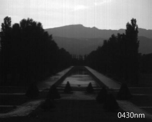 ハイパースペクトルイメージ:430nm