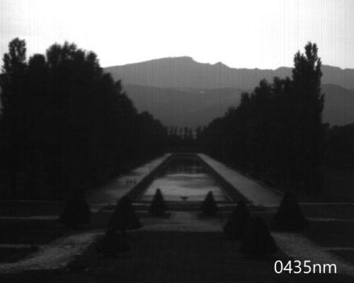 ハイパースペクトルイメージ:435nm