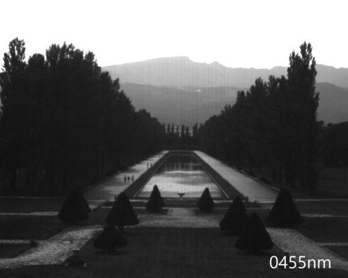 ハイパースペクトルイメージ:455nm