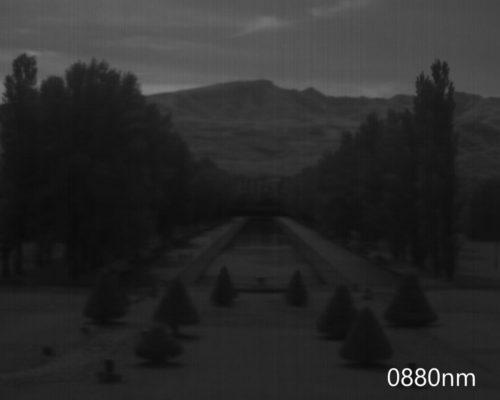 ハイパースペクトルイメージ:880nm