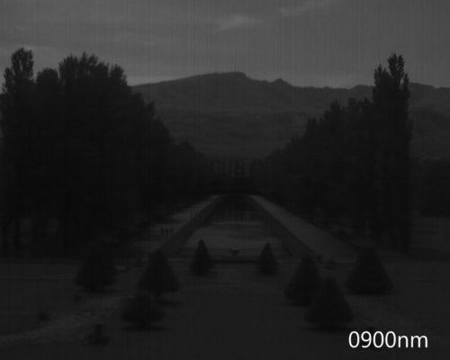 ハイパースペクトルイメージ:900nm