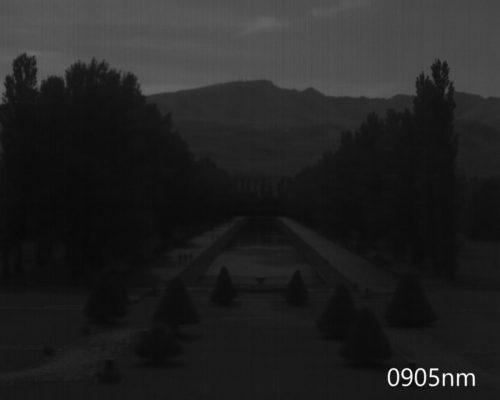 ハイパースペクトルイメージ:905nm