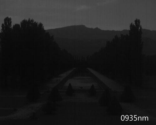 ハイパースペクトルイメージ:935nm