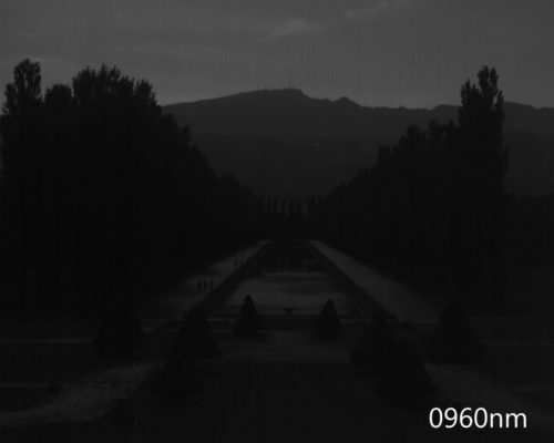 ハイパースペクトルイメージ:960nm