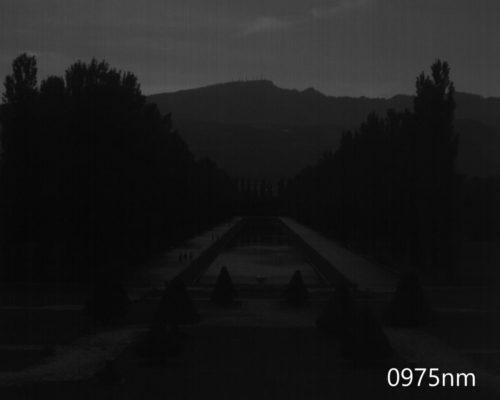 ハイパースペクトルイメージ:975nm
