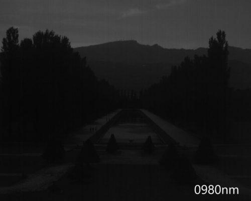 ハイパースペクトルイメージ:980nm