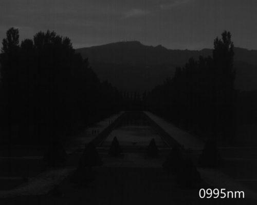 ハイパースペクトルイメージ:995nm