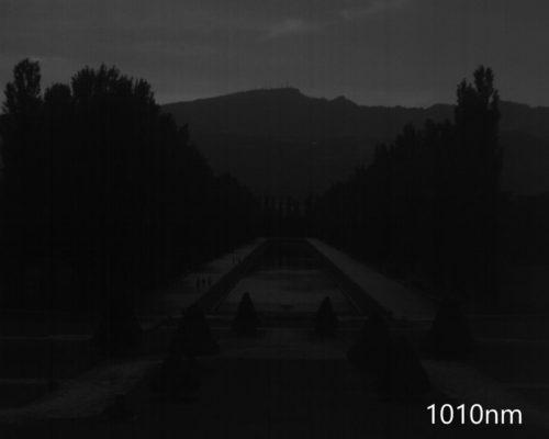ハイパースペクトルイメージ:1010nm