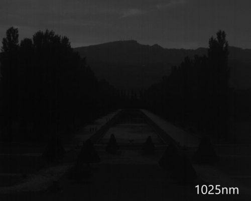 ハイパースペクトルイメージ:1025nm