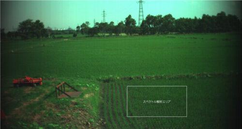 2016年江別市における田んぼのスペクトル解析エリア