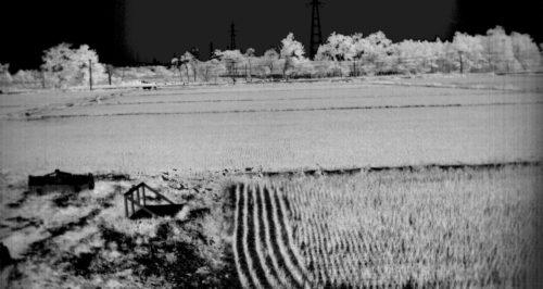 2016年7月01日江別市における田んぼのスペクトル計測-NDVImono-