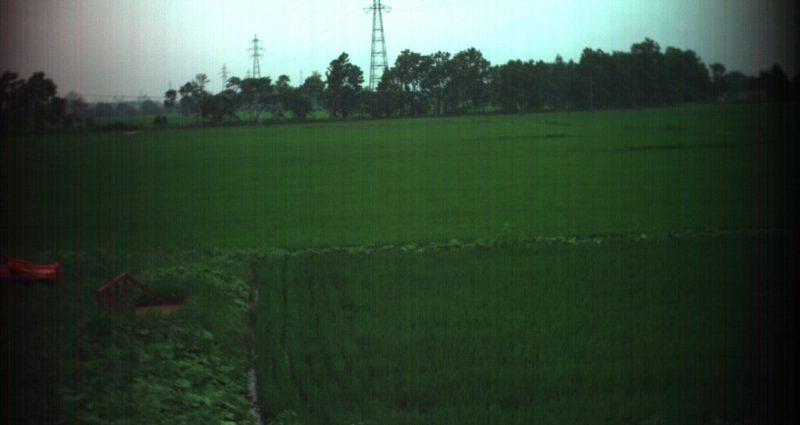 2016年7月29日江別市における田んぼのスペクトル計測