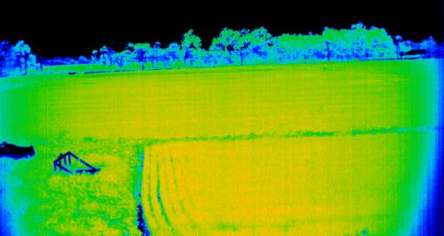2016年7月29日江別市における田んぼのスペクトル計測-NDVI-