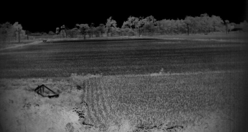 2016年9月06日江別市における田んぼのスペクトル計測-NDVImono-